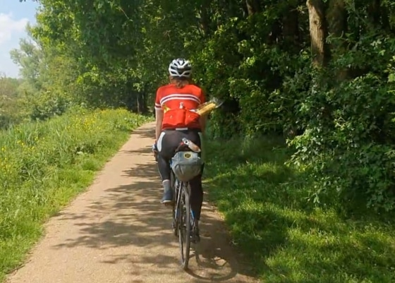cyclists on the forest path